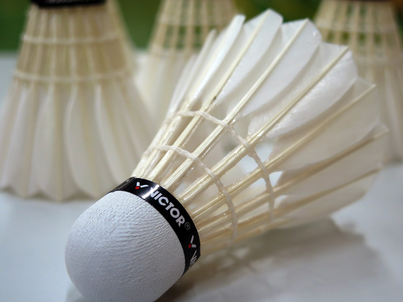 Badminton Facts